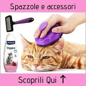 Spazzole e accessori per gatti